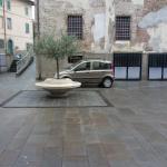 calcinaia_264_2.png