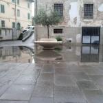 calcinaia_303_1.png