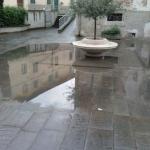 calcinaia_303_2.png