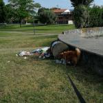 campibisenzio_1768_2.png