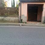 cascianatermelari_140_3.png