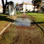 cascianatermelari_2107_2.png