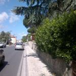 cascianatermelari_533_1.png