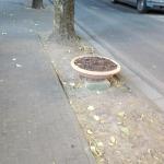 cascianatermelari_563_1.png